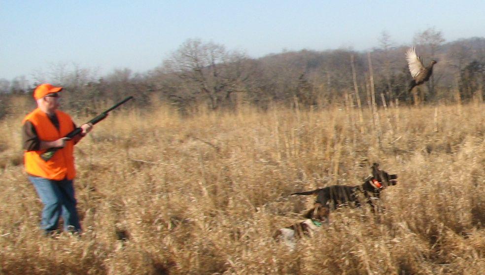 Three Hills Hunting Preserve L.L.C.